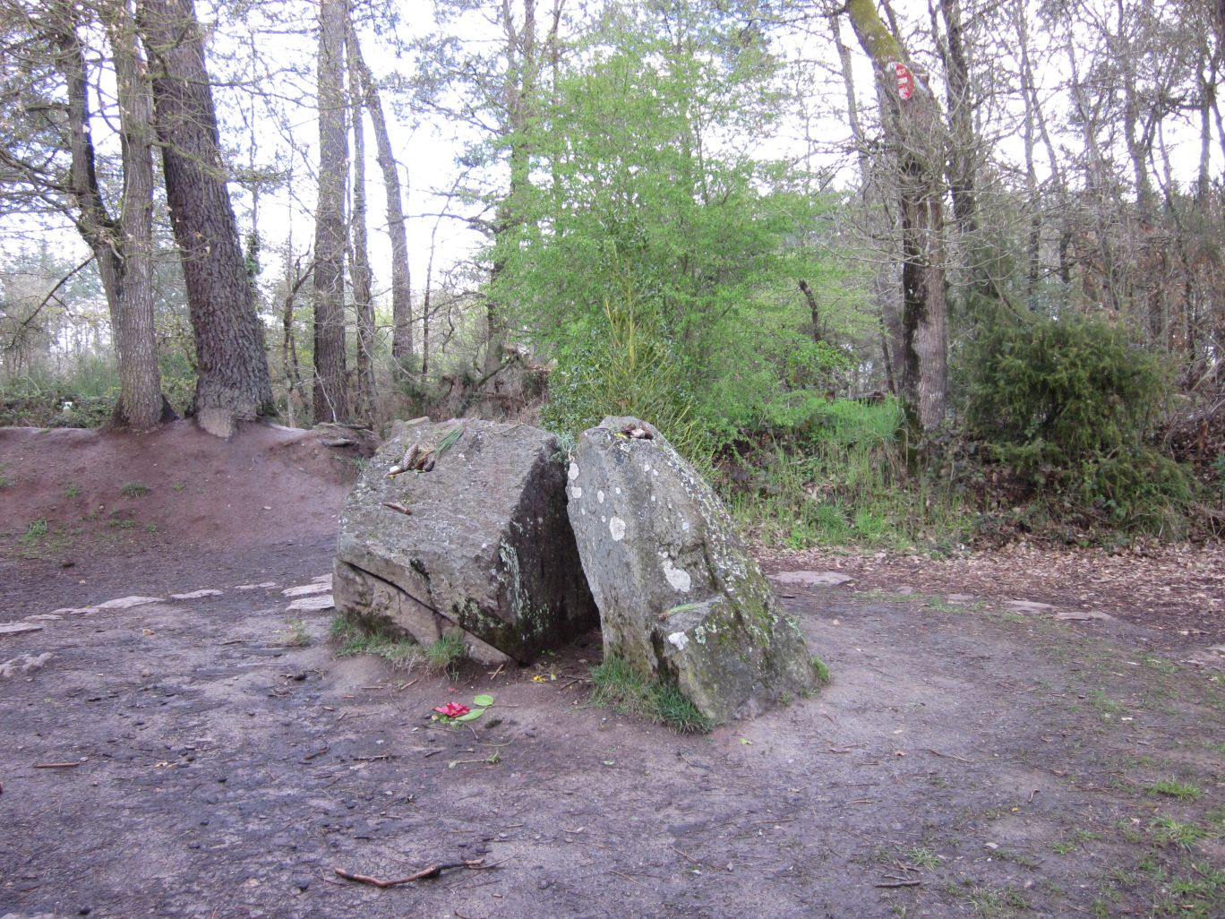 So-called Merlin's tomb, Forest of Paimpont © Wendy Mewes