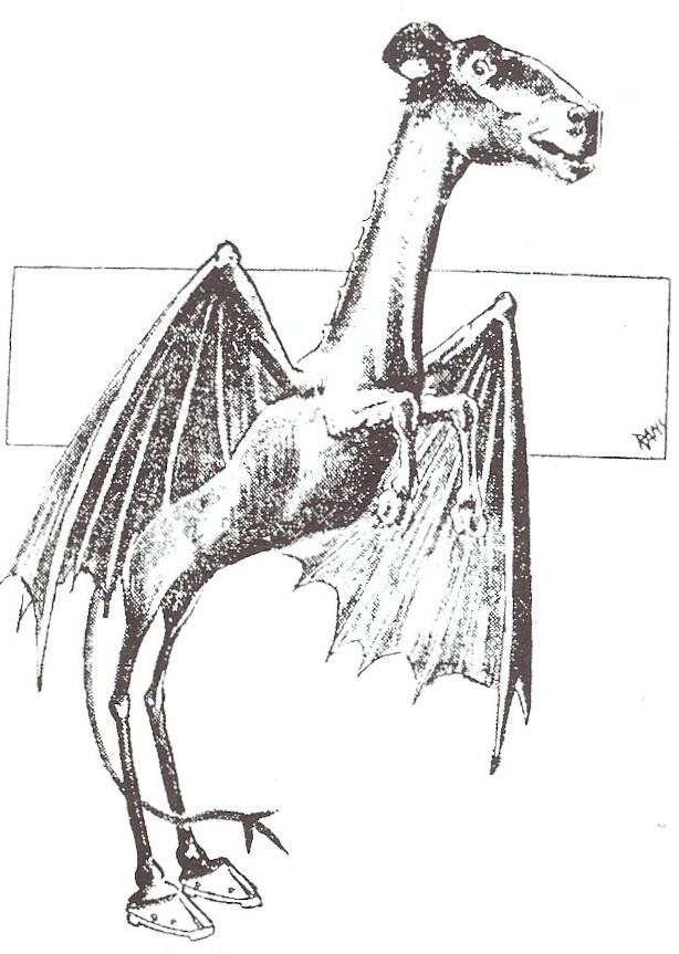 Illustration of the Jersey Devil