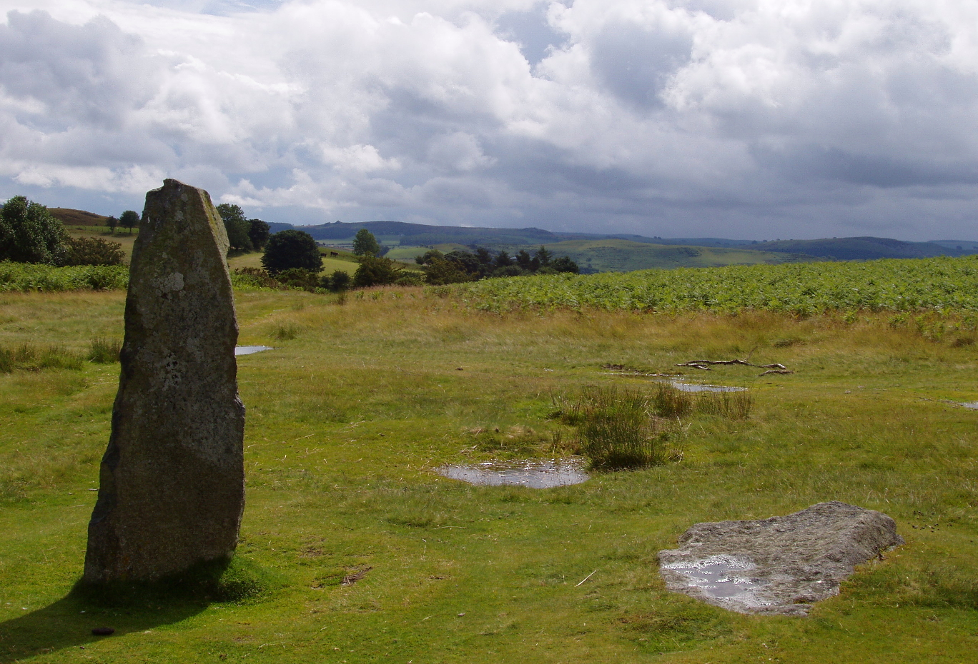 One of the stones still standing at Mitchell's Fold