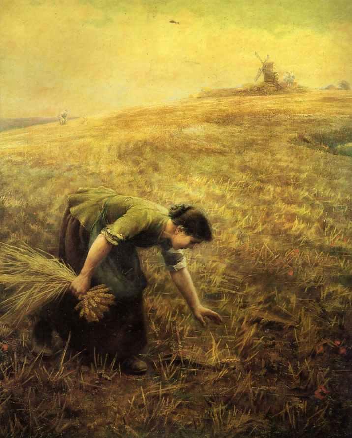 A woman bending in a field, gleaning corn.