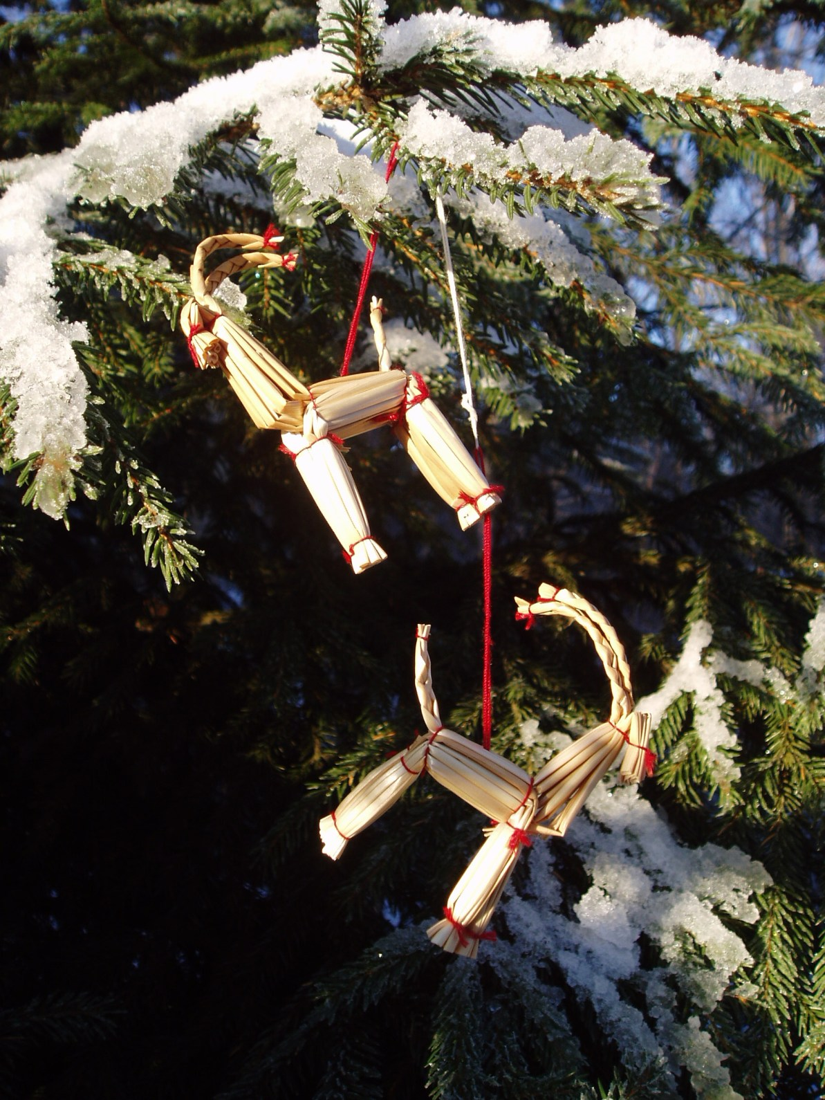 A close-up of two Christmas goat decorations. Udo Schröter (CC BY 2.0) https://www.flickr.com/photos/nordelch/386418158/