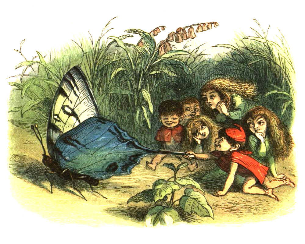 Colourful prints in children's books helped reinforce the cute, miniature fairy in popular culture. Dicky Doyle, 'In Fairyland' https://upload.wikimedia.org/wikipedia/commons/6/6d/PrincessNobody-08.png