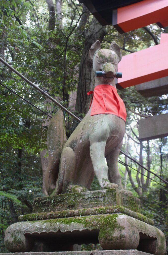 2.One of the kitsune statues guarding the shrine. Most of the statues hold a sacred item in their mouths - this one has a scroll © Amelia Starling