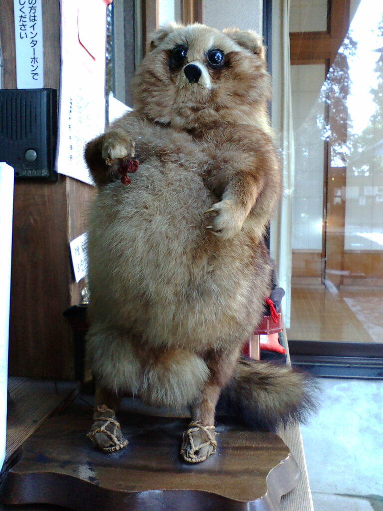 A taxidermy tanuki, at the Morinji temple in Tatebayashi, where the tale of Bunbuku Chagama takes place. By Namazu-tron, CC BY-SA 3.0 https://commons.wikimedia.org/w/index.php?curid=4603876