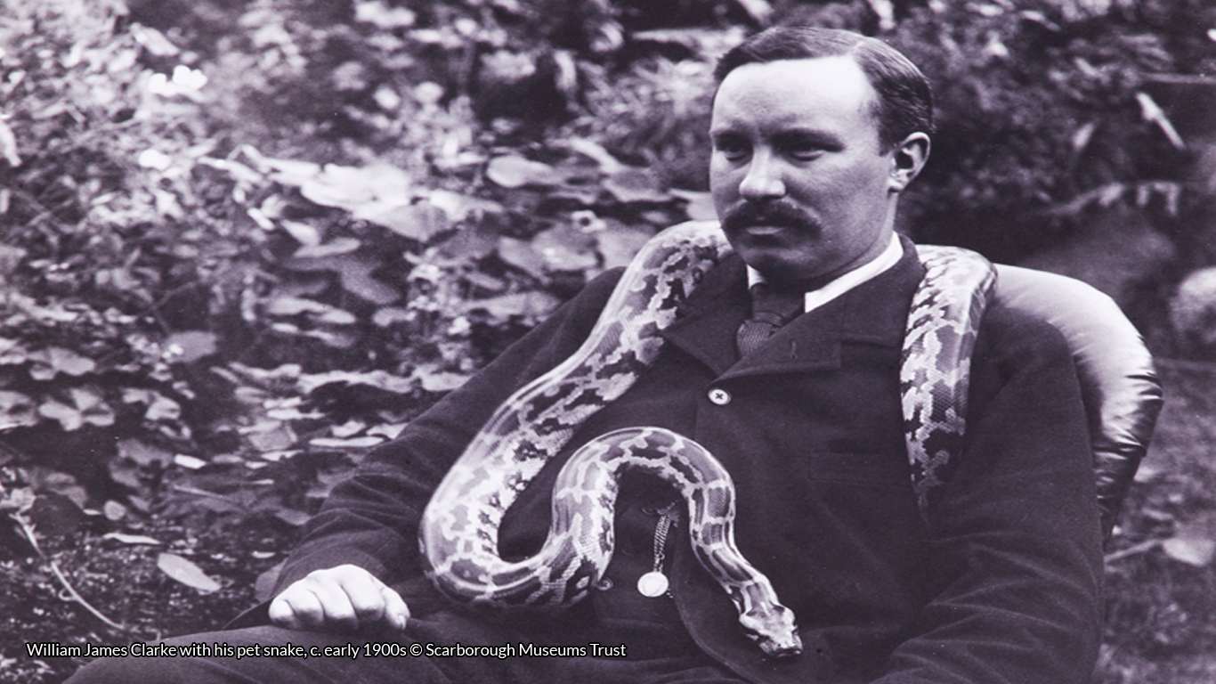 William James Clarke with his pet snake, c. early 1900s © Scarborough Museums Trust