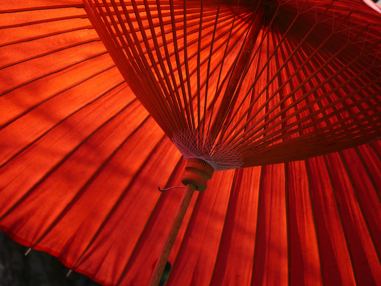 Picture of the inside of an umbrella