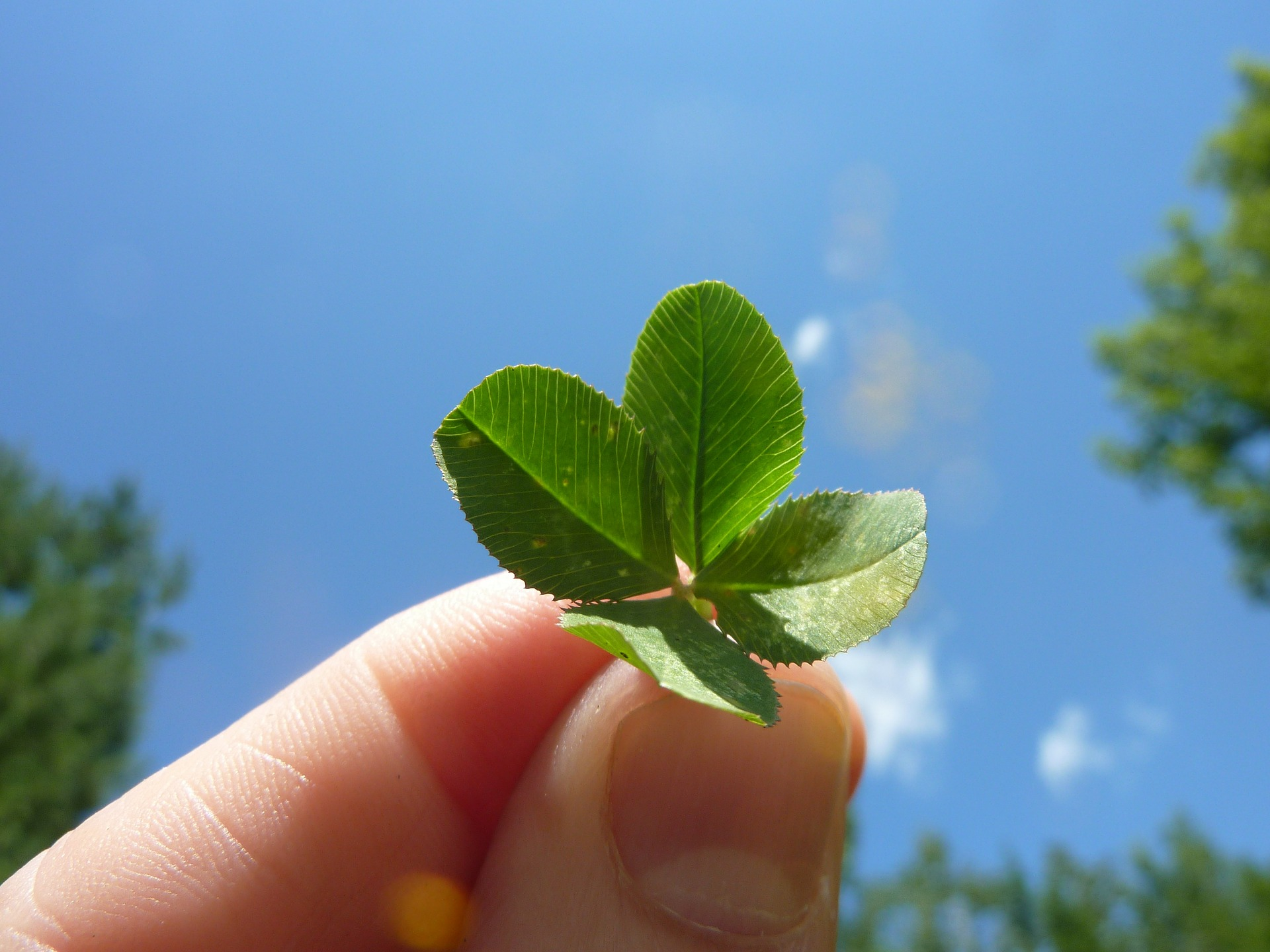 The Four Leaf Clover Druids Eden And Handbags Folklorethursday