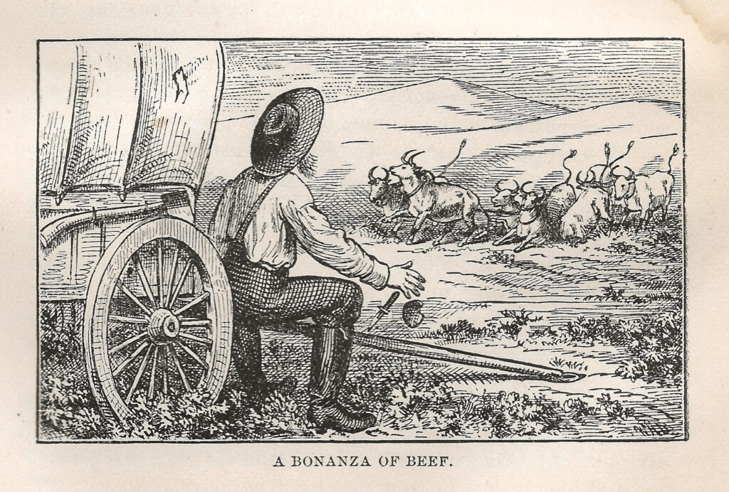 In 1876, Dan De Quille published a story about oxen being pulled into a mining shaft. Accounts like this circulated throughout the mining West. Source https://imgur.com/HEAW9a3