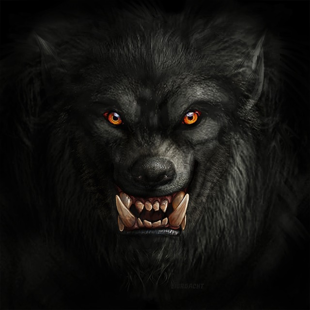 Werewolf by Viergacht. Source https://pixabay.com/illustrations/werewolf-wolf-monster-creature-3546899/