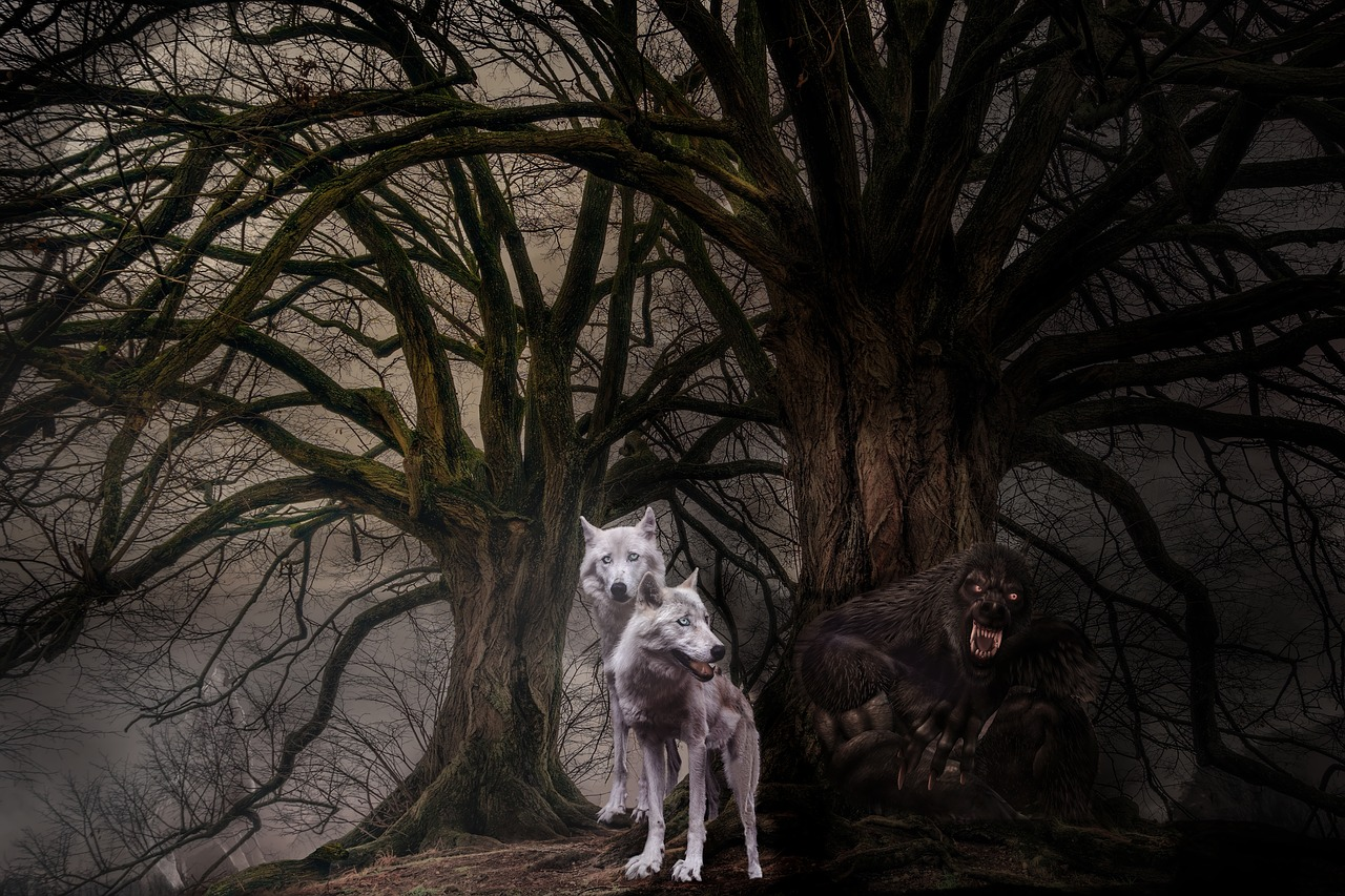 Werewolf by TPHeinz. Source https://pixabay.com/photos/wolves-wolf-fantasy-photomontage-3236097/