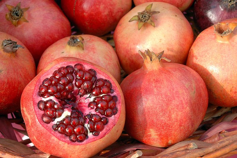 The pomegranate – legendary source of our growing seasons.