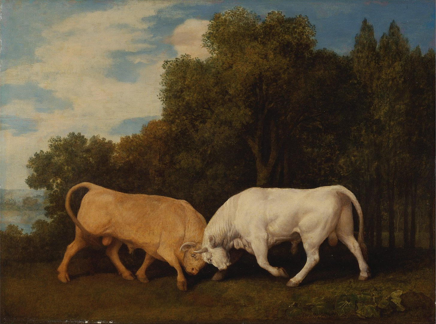 Bulls locking horns. By George Stubbs - qgF1R5N_4f0wlQ at Google Cultural Institute maximum zoom level, Public Domain, https://commons.wikimedia.org/w/index.php?curid=22007953